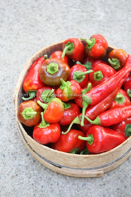 Peperoni rossi piccanti