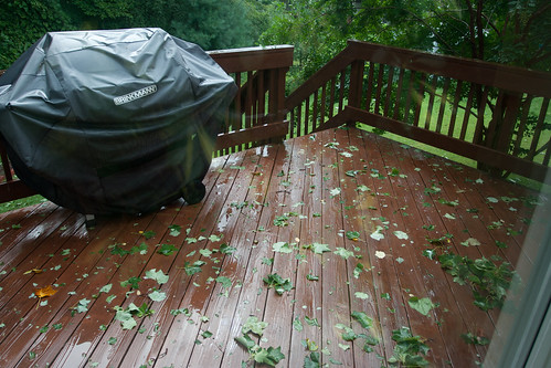 Hurricane Irene Effects 2