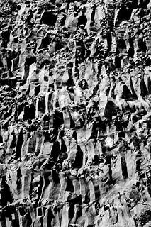 Basaltic columns/forms (B&W)