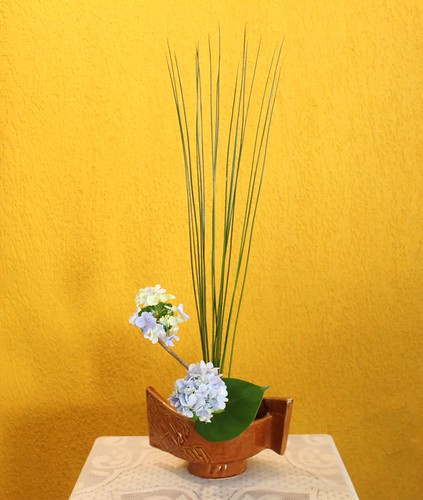 Moribana with hydrangea and juncus by Ligia Ikebana