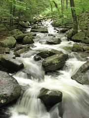 trout brook cascade (2)