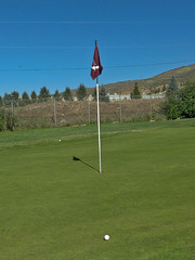 pitch and putt, sport venue, grass, sports, sports equipment, golf, golf course, ball game, lawn,