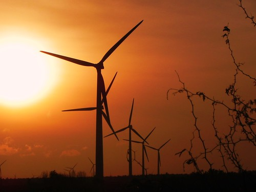 energy windmills electricity tamilnadu sustainable turbines