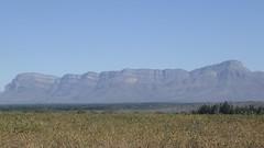 På tur til Moholoholo Wildlife Rehab Centre