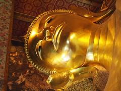sousaphone(0.0), tuba(0.0), musical instrument(0.0), brass instrument(0.0), lighting(0.0), yellow(1.0), gold(1.0),
