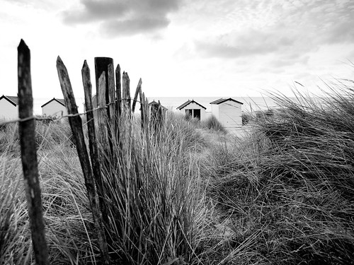 Grass and huts