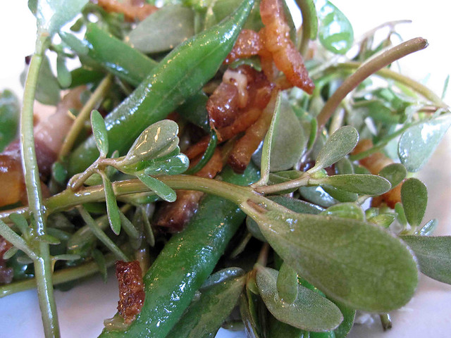 Salad greens, beans, and smoky bacon