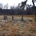Paschal Family Cemetery-Tate Road (#106)