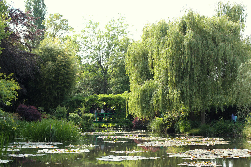 Claude Monet's Japanese water garden