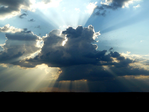 Al principio dios cre el cielo y la tierra for La camera del cielo