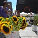 Downtown Sunflowers by brennas1