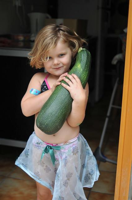a very big zucchini
