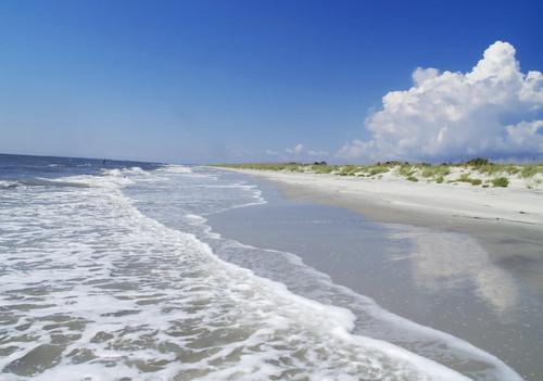 beach ga island olympus 18 zuiko f4 evolt zd sapelo 1445mm nègfoto negfoto usernègfotogeo31390175 81264052 ksortdate