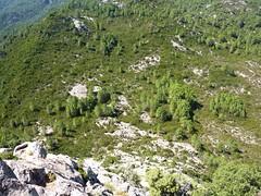 Descente du Castellacciu : la voie de descente vers le col Sud