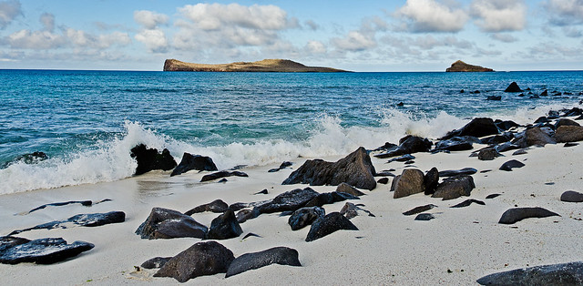 Rocky Shores of the Galapagos Islands