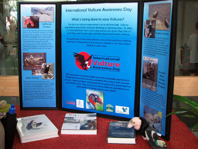 Vulture information display