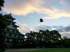 烏城(うじょう)で親しまれる、岡山城。