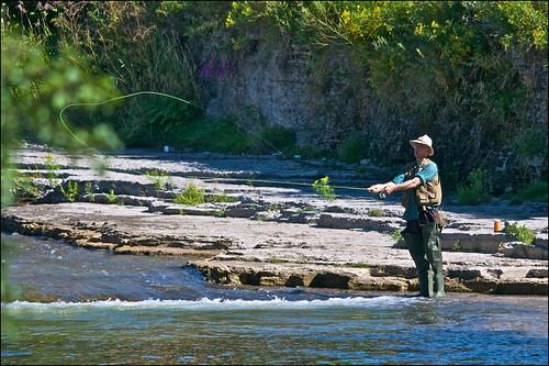 ontario salmon flyfishing lakeontario porthope ganaraskariver