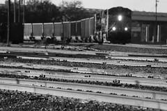 Westbound empty coal rain, Wichita Falls TX