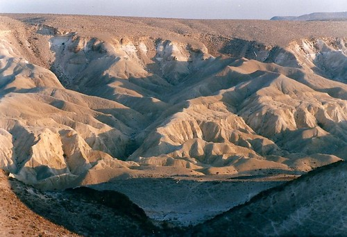 israel desert negev wilderness