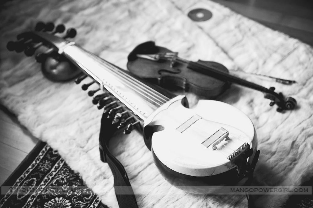 sarod & violin