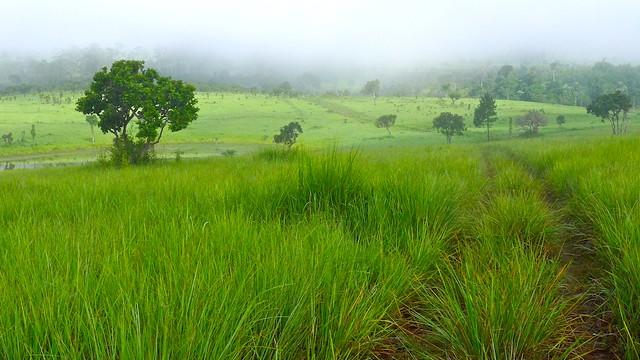 hotels thung salaeng luang national park thailand