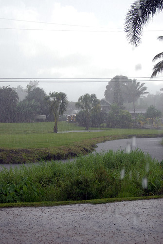 Downpour in Hanalei
