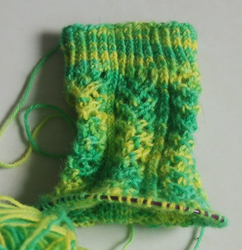 hedera socks by hallucygenia