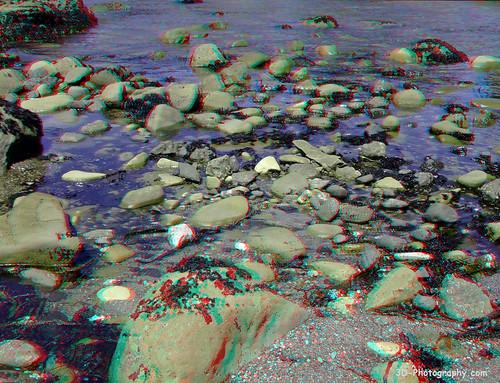 california 3d fuji anaglyph stereo finepix tidepools tidepool w1 mendocinocounty chrisgrossman iversencove