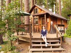 outdoor structure, building, hut, wood, shack, cottage, house, log cabin, tree house, shed, home,