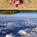 Upside Down by Photo Extremist