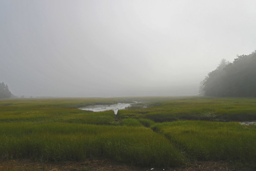 nature maine coastalmaine codharbor edgecombmaineblurredhighcontrasthighquality