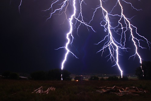 Three Reasons Why You Never Want To Stand Under Trees During a Thunderstorm
