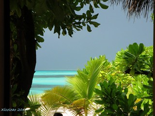 Maldives - 1