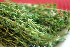 grass(0.0), sencha(0.0), plant(0.0), longjing tea(0.0), food(0.0), dill(0.0), lawn(0.0), gyokuro(0.0), rosemary(1.0), produce(1.0),