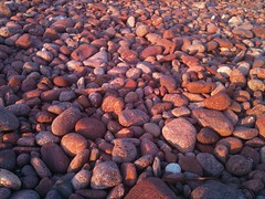 The expanse of the purple stones