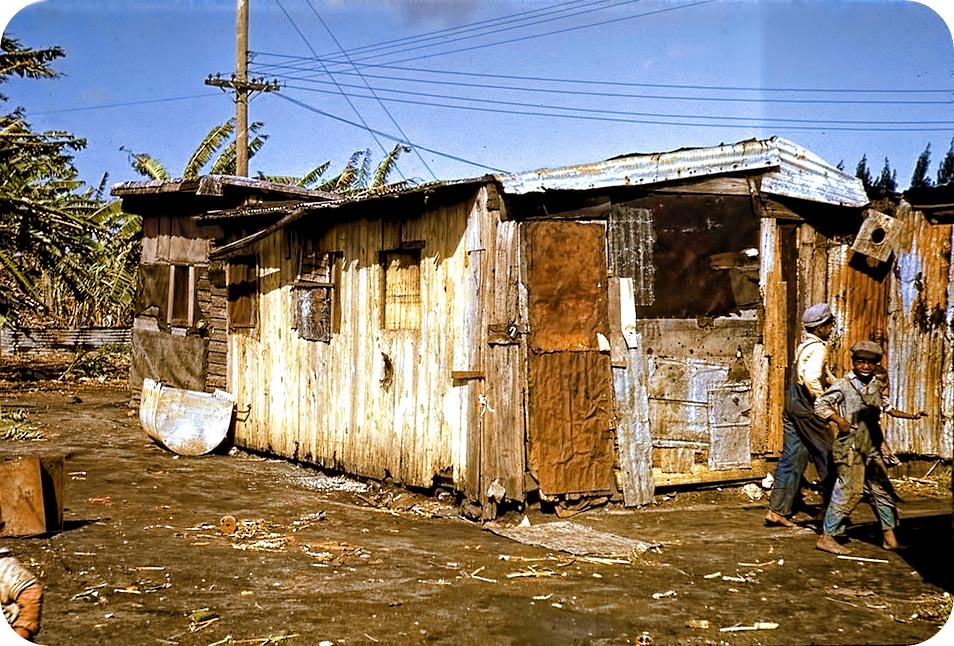 Shacks of Negro Migratory Workers in Belle Glade, Florida - circa 1941