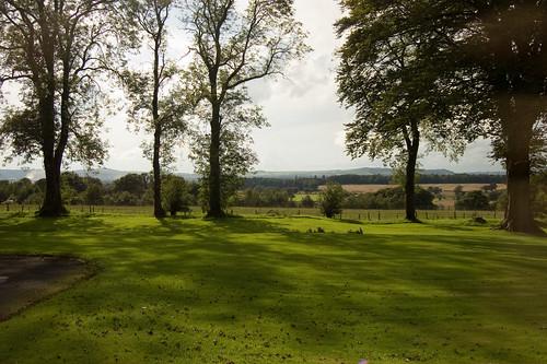 trees woodland landscape scotland scenery view greenery dryfesdalehotel