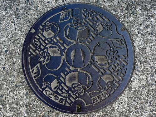 Kudoyama Wakayama manhole cover(和歌山県九度山町のマンホール)