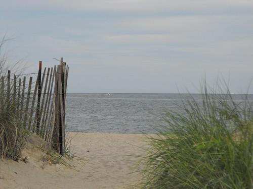 Tranquil Beachgate