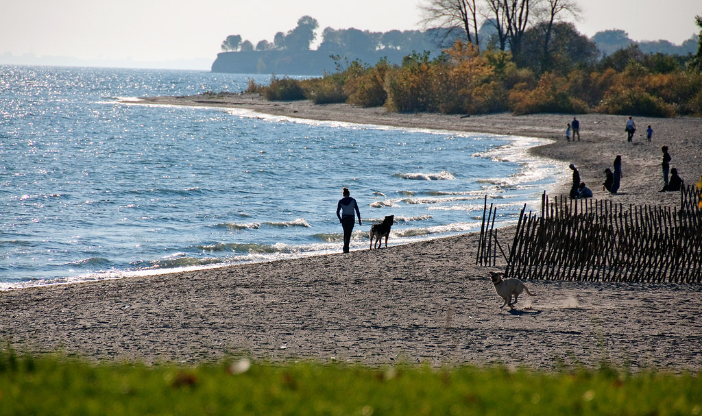 Ontario Beach Park Flooding