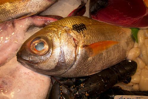 Fish market por quinet, en Flickr
