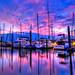 Seabrook Marina, Seabrook Texas by CMitchell Photo