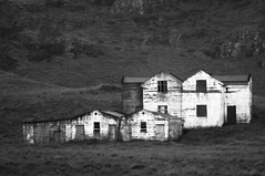 Old farmstead (B&W)