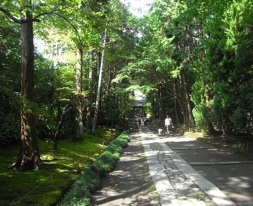 Sat, 17/09/2011 - 10:32 - 総門と中門を結ぶ参道