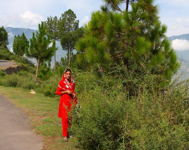 Maiden near Danna village, Kashmir