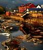 Llangollen, Wales. by Bearded iris.