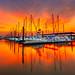 Seabrook Marina – Seabrook, Texas {EXPLORE} by CMitchell Photo