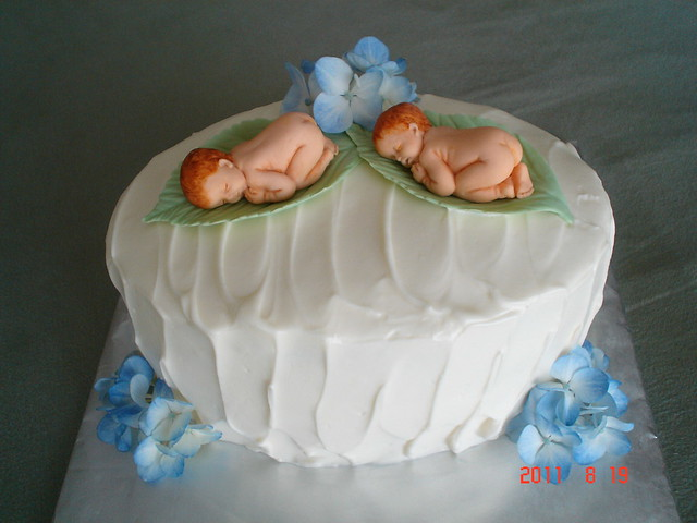 twin baby cake flickr photo sharing
