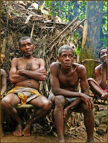 africa cameroon baka pygmy tosstudio